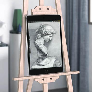 Benks матовая защитная пленка для iPad Mini 5, фото №9
