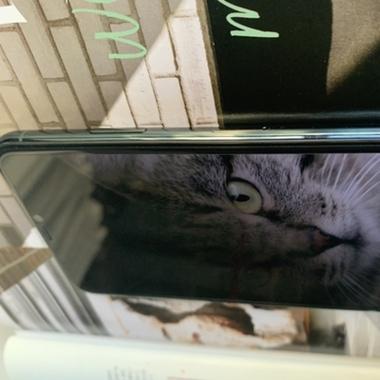 Защитное стекло антишпион для iPhone Xr/11 (Anti-Spy), фото №21, добавлено пользователем