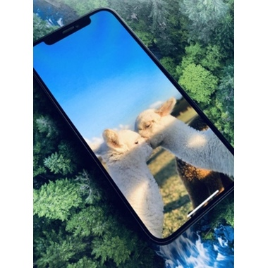 """Защитное стекло для iPhone 12/12Pro (6,1"""") - CKR+ Corning серия 0,4 мм., фото №4, добавлено пользователем"""