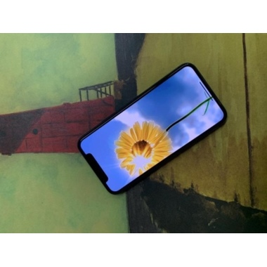Benks VPro защитное стекло на iPhone Xr/11, фото №6, добавлено пользователем