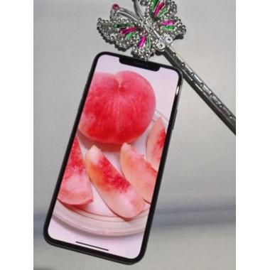 Benks Защитное 3D стекло для iPhone 11/Xr - Corning, фото №5, добавлено пользователем