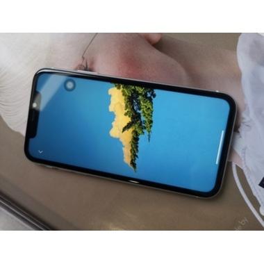 Benks Защитное 3D стекло для iPhone 11/Xr - Corning (New), фото №4, добавлено пользователем