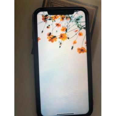Benks Anti-Spy защитное стекло для iPhone Xs Max/11 Pro Max, фото №18, добавлено пользователем