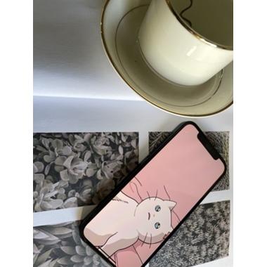 "3D защитное стекло для iPhone 12/12Pro (6,1"") XPro Corning 0,4 мм., фото №9, добавлено пользователем"