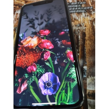 Benks VPro защитное стекло на iPhone Xr/11, фото №17, добавлено пользователем