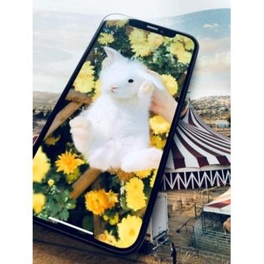 Защитное стекло для iPhone 12 Pro Max 3D XPro Corning 0,4 мм., фото №5, добавлено пользователем