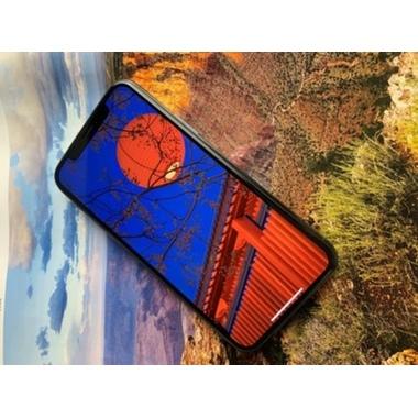 Benks VPro защитное стекло на iPhone Xs Max/11 Pro Max Anti Blue Light, фото №3, добавлено пользователем